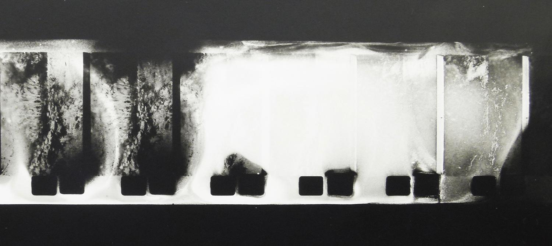 Analogue photography/film