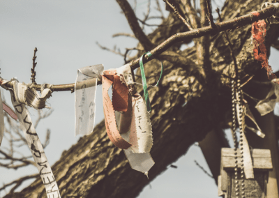 Various ribbons with text written on them hung from tree branches.